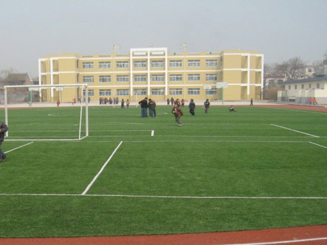 Top Quality Tennis Outdoor Field Artificial